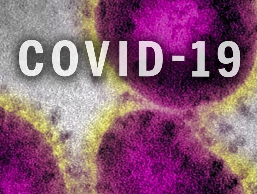 covid_19_1961x200-2-1569x1600.jpg